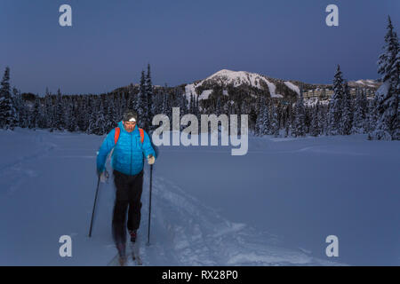 A back country skier works his way through Paradise Meadows at night, Mt. Washington in the background.  The Comox Valley, Vancouver Island, British C - Stock Photo