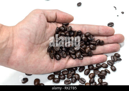 Men are holding coffee beans in their hands with a white background. - Stock Photo