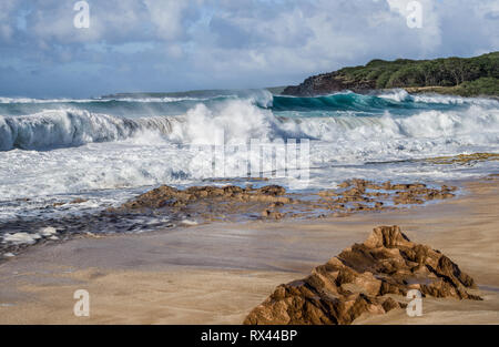 Volcanic Beach:  Strong winds and an incoming tide create large waves that crash against a volcanic shelf on a beach in the Hawaiian Islands. - Stock Photo