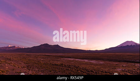Sunset in Andes. Parinacota volcano. High Andean landscape in the Andes. High Andean tundra landscape in the mountains of the Andes. - Stock Photo