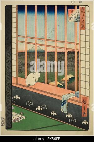 Asakusa Rice Fields and Torinomachi Festival (Asakusa tanbo Torinomachi mode), from the series 'One Hundred Famous Views of Edo (Meisho Edo hyakkei)'. Utagawa Hiroshige ?? ??; Japanese, 1797-1858. Date: 1852-1863. Dimensions: 35.9 x 24.8 cm (14 1/8 x 9 3/4 in.). Color woodblock print; oban. Origin: Japan. Museum: The Chicago Art Institute. - Stock Photo