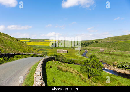 Quiet country road to Birkdale Common by River Swale in Upper Swaledale, Yorkshire Dales National Park, North Yorkshire, England, UK, Britain - Stock Photo