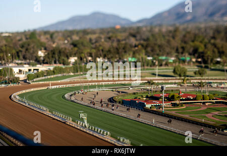 Arcadia, Ca, USA. 9th Mar, 2019. March 08, 2019: Horses train on the inner training track while the main track is closed to evaluate the safety of the surface at Santa Anita on March 08, 2019 in Arcadia, California. Evers/Eclipse Sportswire/CSM/Alamy Live News - Stock Photo