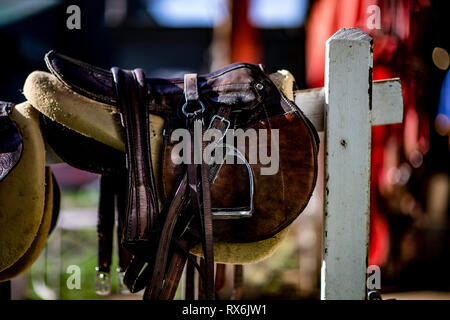 Arcadia, Ca, USA. 9th Mar, 2019. March 08, 2019: Scenes from track work at Santa Anita on March 08, 2019 in Arcadia, California. Evers/Eclipse Sportswire/CSM/Alamy Live News - Stock Photo