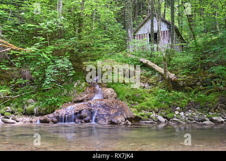 Old wooden hut next to a little stream in deep forest. Bavaria, Germany - Stock Photo