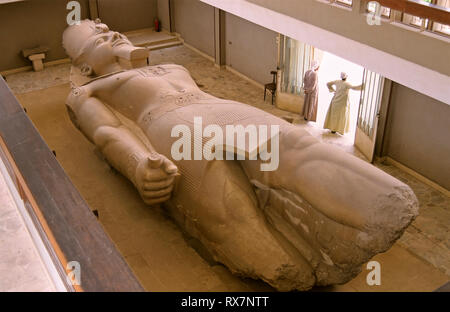 Colossal statue of Ramses II, lying on the ground. Ruins of Memphis. Egypt. Africa - Stock Photo