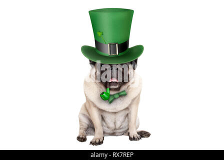 cute smiling st patricks day pug puppy dog sitting down with green top hat and pipe, isolated on white background - Stock Photo