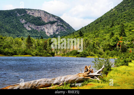 Crawford notch lake and mountains - Stock Photo