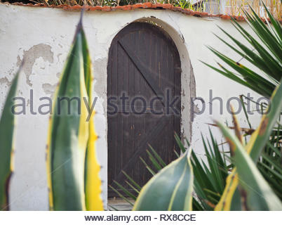 Old vintage wooden door with an arch and ceramic tiles on top - Stock Photo