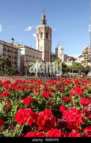 Valencia Cathedral Tower, Medieval El Micalet Belltower, Plaza de la Reina in Spring, Flowers, Old Town, Spain Europe - Stock Photo