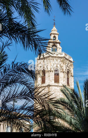Valencia, medieval El Micalet tower at Cathedral, Plaza de la Reina, Old Town Palm tree leaves, Spain - Stock Photo