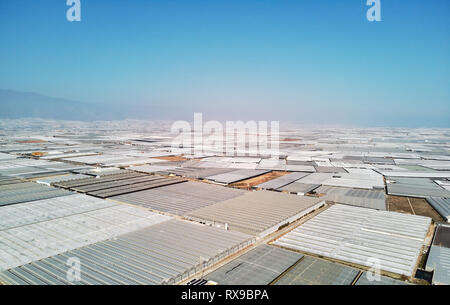 Aerial above drone point of view lot amount polythene plastic exterior greenhouses hothouses where cultivated fruits and vegetables in the Almerimar,  - Stock Photo