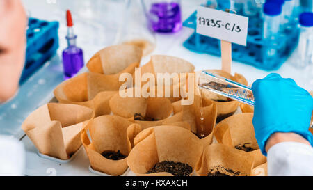 Watering samples in soil science laboratory - Stock Photo
