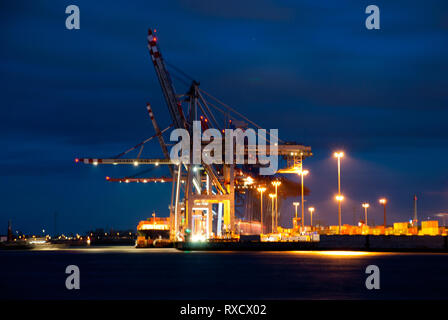Container terminal 'Tollerort' in the port of Hamburg (Germany) during blue hour - Stock Photo