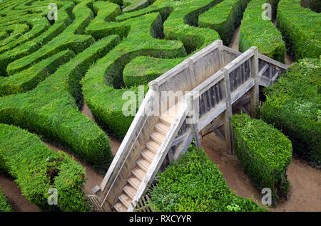 overview in the maze - Stock Photo
