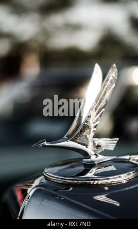 Detail close up shot of a chrome stork hood ornament on the hood of a classic automobile. - Stock Photo