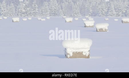 Heavy snow during the winter season in a rural area. Thick snow covering the whole area in this cold winter season - Stock Photo