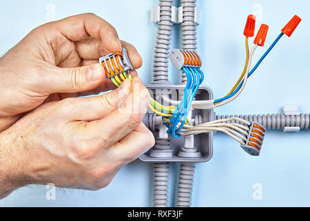 Electrician is making new junction box for electrical wires with help of push wire connectors and closed end crimp caps on copper wiring. - Stock Photo