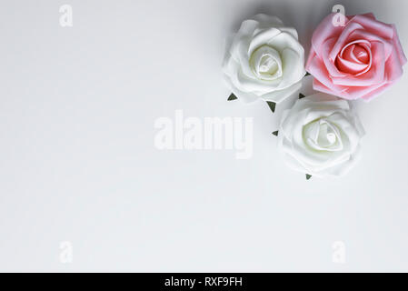 Top view of three roses in pink and white color, arranged as a decoration with copy space on white table. Valentines day love concept. - Stock Photo