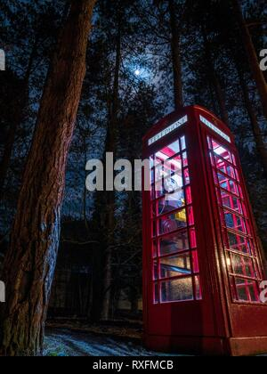 A red phone box lit up at night in a forest in England - Stock Photo