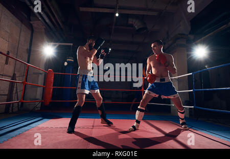 Handsome male fighter practicing kickboxing with sparring partner in the ring at the health club - Stock Photo