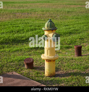 A Yellow and Green painted American Fire Hydrant in the lot of the Staybridge Suites Hotel in Brownsville, Texas, USA. - Stock Photo