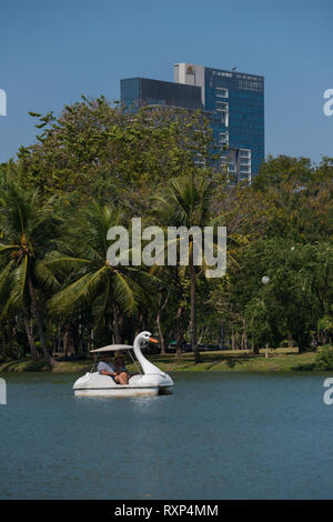 Swan pedal boat in Bangkok Lumpini park, Thailand - Stock Photo