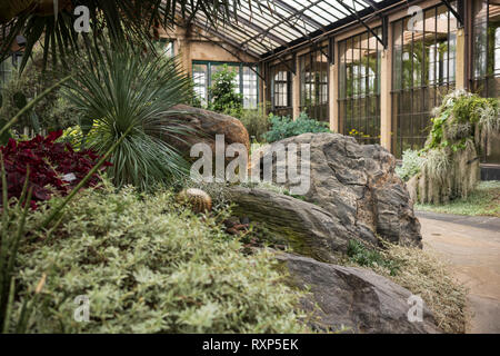 Orchid Extravaganza at Longwood Gardens, Kennett Square, Pennsylvania, USA, March 3, 2019. - Stock Photo