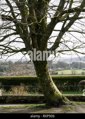 Park Walk, Shaftesbury abbey, Shaftesbury, Dorset, UK - Stock Photo
