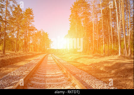 Abandoned railway under the trees painted in autumn. Sunny day. Tunnel of Love. Background - Stock Photo