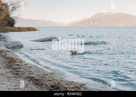 Evening sky and sunlight on the lake, a beautiful promenade with villages and the horizon with mountains. Free space for text. Travel and tourism in E - Stock Photo