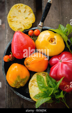 Large juicy multi-colored tomatoes - Stock Photo