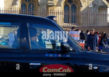 Westminster, London, UK. 28th January, 2019. Pro-Brexit And Anti-Brexit Activists demonstrate in Westminster, London. - Stock Photo