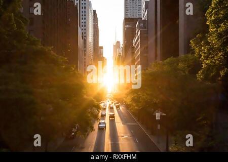 Sunlight shines on the buildings and cars along 42nd Street through Midtown Manhattan around the Manhattanhenge sunset in New York City - Stock Photo