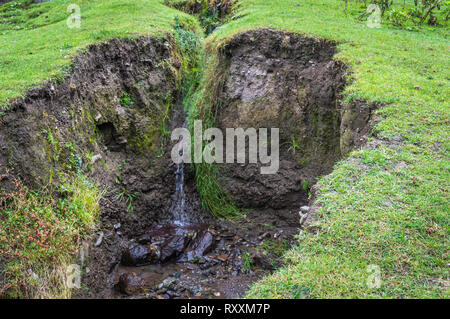 Water flowing through a crevice in the earth wwith lush green grass. Soil ersosion. Landslide. - Stock Photo