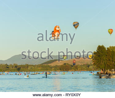CANBERRA, AUSTRALIA – March 11, 2019: Colorful hot air balloons in flight over Lake Burley Griffin in Canberra as Kayakers keep watch and a ferry pass - Stock Photo