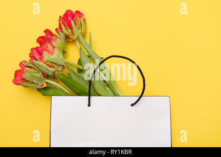 Beautiful red tulip flowers in white gift package on blue background.