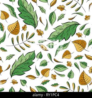 Autumn leaves hand drawn color seamless pattern. Oak, birch, walnut trees foliage vector illustration. Fresh green, autumnal yellow doodle leafage. Botanical wallpaper, textile, wrapping paper design - Stock Photo