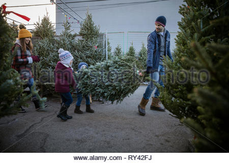 Father and children carrying christmas tree at christmas market - Stock Photo