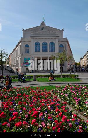 Theater, Gaertnerplatz, Muenchen, Bayern, Deutschland, Gärtnerplatz - Stock Photo
