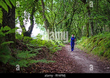 Young female pilgrim walking the Way of Saint James (Camino de Santiago), Galicia, Spain - Stock Photo