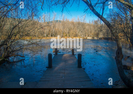 Frozen pond. Finnish Forest, Rascafria, Madrid province, Spain. - Stock Photo