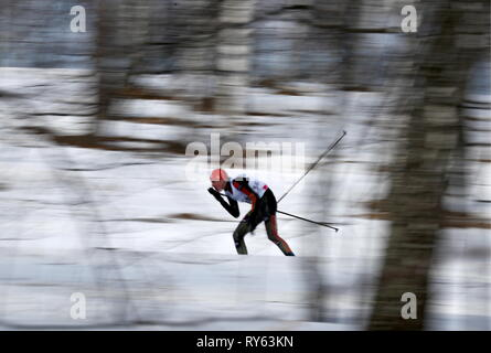 Krasnoyarsk, Russia. 12th Mar, 2019. KRASNOYARSK, RUSSIA - MARCH 12, 2019: A cross-country skier competes in the men's 30km mass start final event at the Raduga Cluster as part of the Krasnoyarsk 2019 Winter Universiade. Stanislav Krasilnikov/TASS Credit: ITAR-TASS News Agency/Alamy Live News - Stock Photo