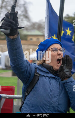 London, UK. 12th Mar, 2019. Protesters outside the UK Houses of Parliament in London ahead of the second so-called meaningful vote in House of Commons on Theresa May's revised EU Withdrawal (Brexit) Agreement. Photo date: Tuesday, March 12, 2019. Photo credit should read Credit: Roger Garfield/Alamy Live News - Stock Photo
