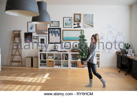Young woman carrying small christmas tree in studio - Stock Photo
