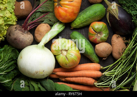 High angle view of various vegetables on table - Stock Photo