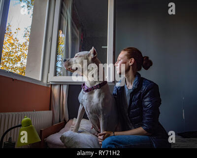 Woman with Great Dane looking through window while sitting on bed at home - Stock Photo