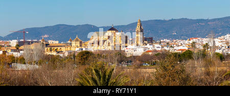 Exterior of old Mezquita Cathedral of Cordoba city above Guadalquivir river with bare trees in bright sunlight on background of mountains in Andalusia - Stock Photo