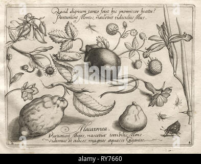 Archetypes and Studies: What can emerge in keeping with such a cavernous promise? (Part IV, plate 2), 1592. Joris Hoefnagel (Flemish, 1542-1601), after Jacob Hoefnagel (Flemish, 1575-c.1630). Engraving; sheet: 18.6 x 27.2 cm (7 5/16 x 10 11/16 in.); platemark: 15.7 x 21.1 cm (6 3/16 x 8 5/16 in - Stock Photo
