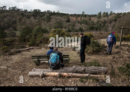 Devil's Punch Bowl, 282.2-hectare biological Site of Special Scientific Interest east of Hindhead in Surrey, England, United Kingdom - Stock Photo